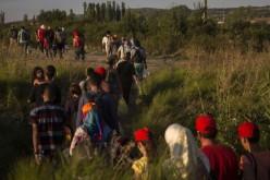 Migrantii sirieni sunt marcati cu numere pe maini, intr-un gest care aduce aminte de practicile folosite de nazisti